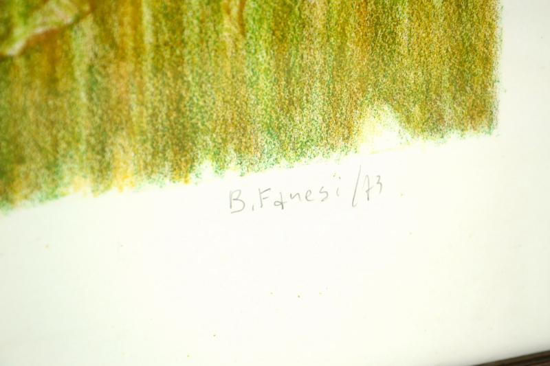 stampa-numerata-bruno-fanesi-77-di-100-anno-73-1,1441.jpg?WebbinsCacheCounter=1