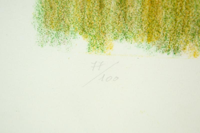 stampa-numerata-bruno-fanesi-77-di-100-anno-73-3,1442.jpg?WebbinsCacheCounter=1-antiquastyle